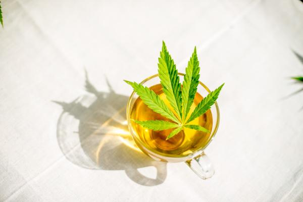 Simply Hemp - Pure hennepthee 40 gram - Biologisch - Dutch Harvest losse thee